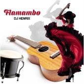 Flamambo von DJ Henrix