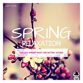SPRING RELAXATION Chilling Ambient Music and Natural Sounds by Various Artists