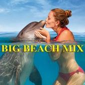 Big Beach Mix de Various Artists