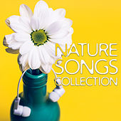 Nature Songs Collection – Relaxing Music,  Massage Therapy, Spa, Wellness, Zen, Bliss, Rest de Nature Sounds Artists