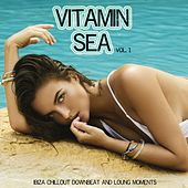 Vitamin Sea, Vol. 1 (Ibiza Chillout Downbeat and Lounge Moments) by Various Artists