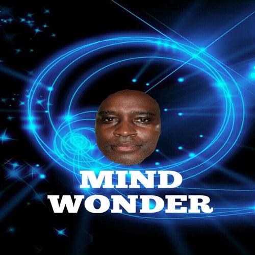 Mind Wonder by Mathis Thomas