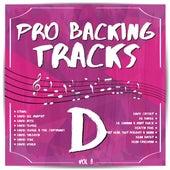 Pro Backing Tracks D, Vol.8 by Pop Music Workshop
