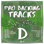 Pro Backing Tracks D, Vol.10 by Pop Music Workshop