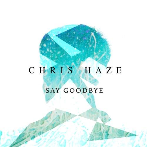 Say Goodbye de Chris Haze