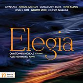 Elegia by Christopher Nichols