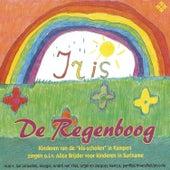 De Regenboog by Jan Lenselink
