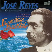 Flamenco Passion by Various Artists
