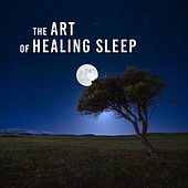 The Art of Healing Sleep (Nature Sounds and Sleep Music, Treatment of Insomnia, Relaxation Before Bedtime, Dream & Sleep Deeply) by Various Artists