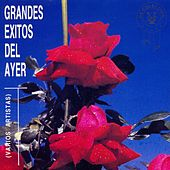 Grandes Éxitos del Ayer von Various Artists