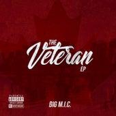 The Veteran by Big Mic