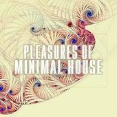 Pleasures of Minimal House by Various Artists