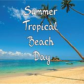 Summer Tropical Beach Day by Nature Sound