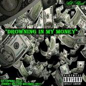 Drowning In My Money by Ali Sheik