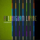 Stringology by Pulkingham Layne