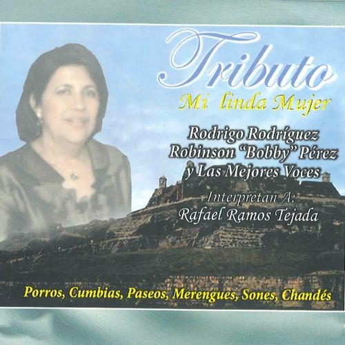 Tributo Mi Linda Mujer by Rodrigo Rodriguez