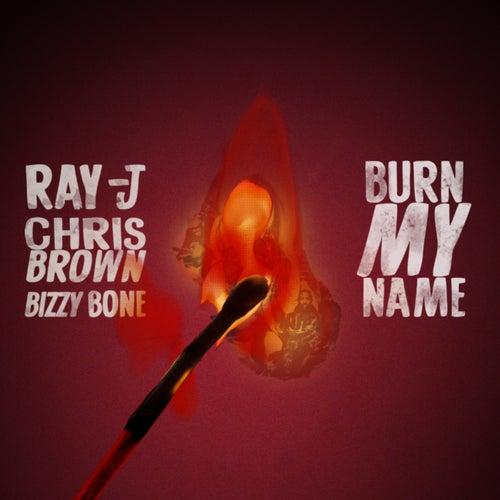 Burn My Name (feat. Bizzy Bone) by Chris Brown