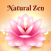 Natural Zen – Healing Nature Sounds, Deep Relaxation, Bliss, Relaxing Music Therapy de Nature Sounds Artists