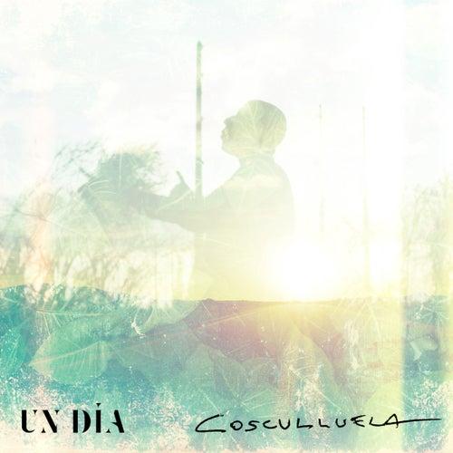 Un Día by Cosculluela