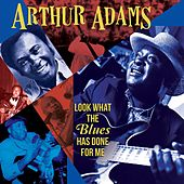 Look What the Blues Has Done for Me by Arthur Adams
