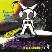 This Is Jungle Sky, Vol. 2 by Various Artists