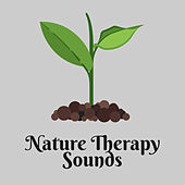 Nature Therapy Sounds – Nature Music to Relax, Stress Free, Inner Peace, New Age Relaxation de Nature Sounds Artists