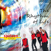 The Rhythm of Life von Various Artists