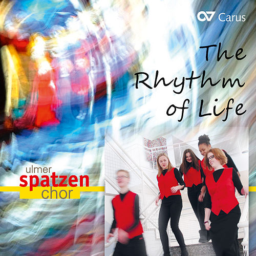 The Rhythm of Life by Various Artists