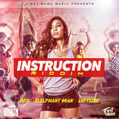 Instruction Riddim von Various Artists