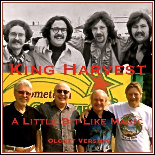 A Little Bit Like Magic by King Harvest