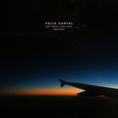 Get What You Give (Remixes) von Felix Cartal