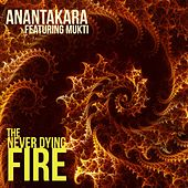 The Never Dying Fire de Various Artists