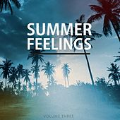 Summer Feelings, Vol. 3 (Selection Of Refreshing House Beats) by Various Artists