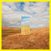 Standing In The Middle Of The Field (Edit) de Cut Copy