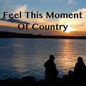 Feel This Moment Of Country de Various Artists