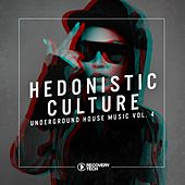 Hedonistic Culture, Vol. 4 by Various Artists