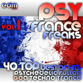 Psy France Freaks v1 - 40 Top Best of Hits French Psychedelic Fullon Goa Techno Trance Masters 2013 von Various
