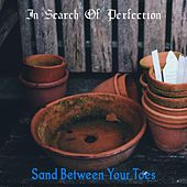 In Search of Perfection by Sand Between Your Toes