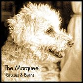 Bruises & Burns by Marquee