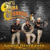 Logre Olvidarte by La Tuba Sierreña