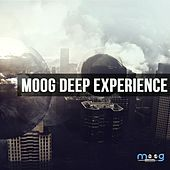 Moog Deep Experience by Various Artists