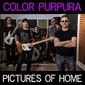 Pictures of Home by Color Púrpura