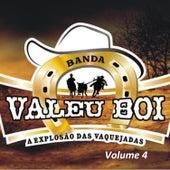 A Explosão das Vaquejadas, Vol. 4 de Banda Valeu Boi