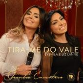 Tira-me do Vale by Liz Lanne
