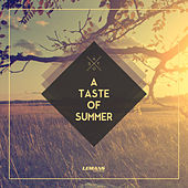 A Taste of Summer by Various Artists