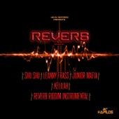 Reverb Riddim by Various Artists