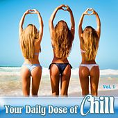 Your Daily Dose Of Chill, Vol. 1 de Various Artists