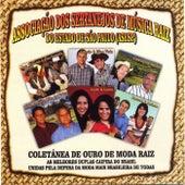 Coletânea de Ouro de Moda Raiz de Various Artists