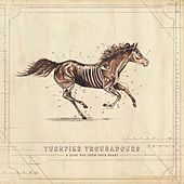 A Long Way from Your Heart de Turnpike Troubadours