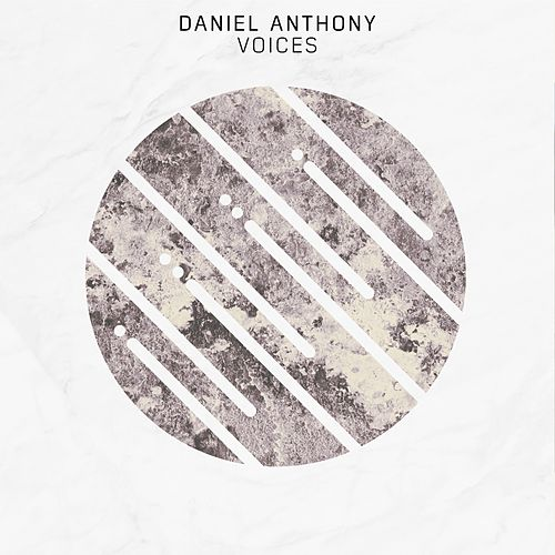 Voices by Daniel Anthony